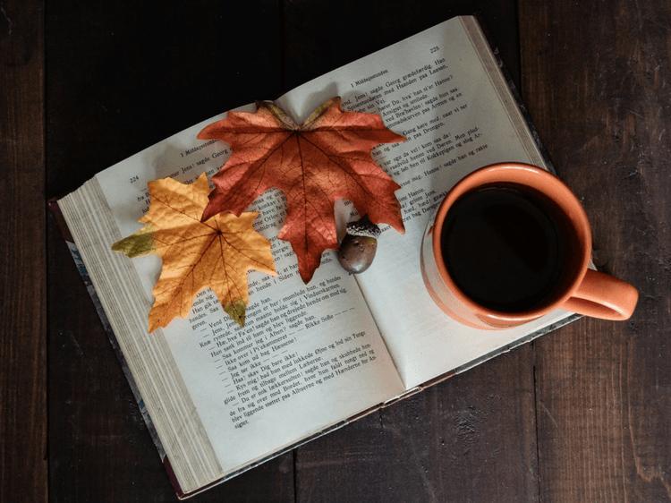 Littérature : 5 livres écrits par des femmes à lire en novembre