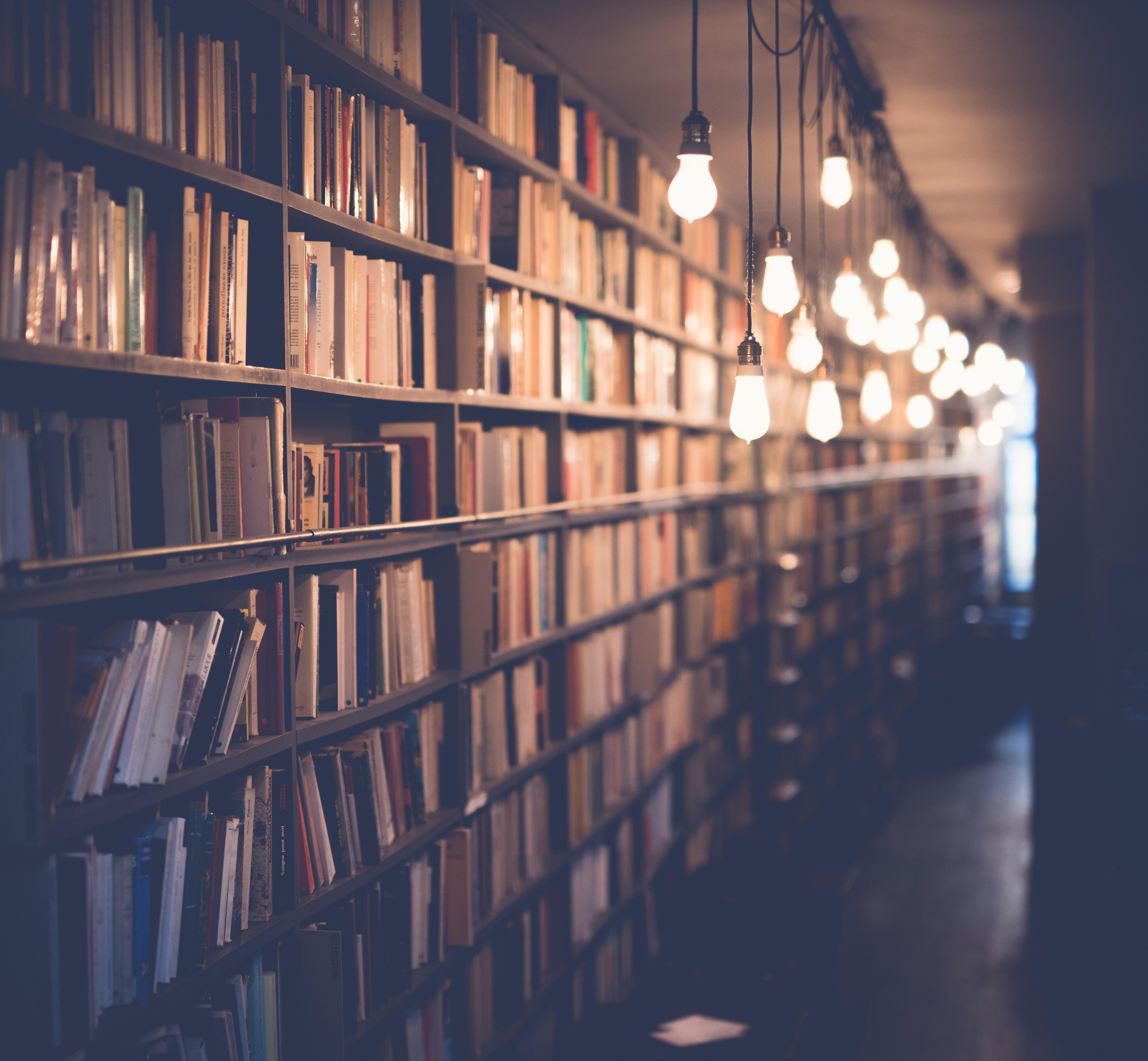 Littérature : 5 livres à découvrir en décembre