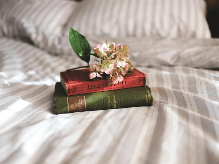 Littérature : 5 livres écrits par des femmes à lire en février