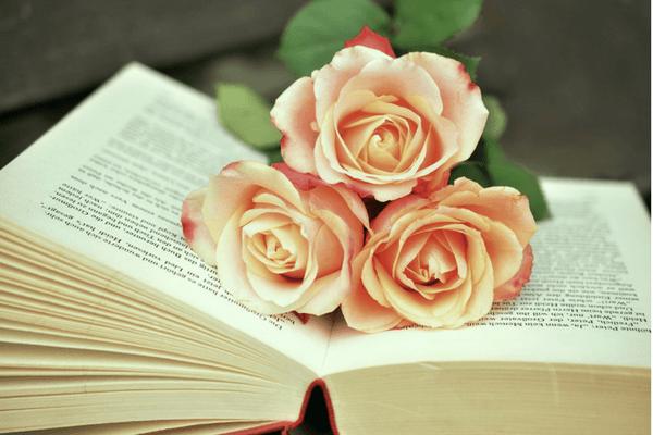 Sélection littéraire de mars : quatre livres à savourer