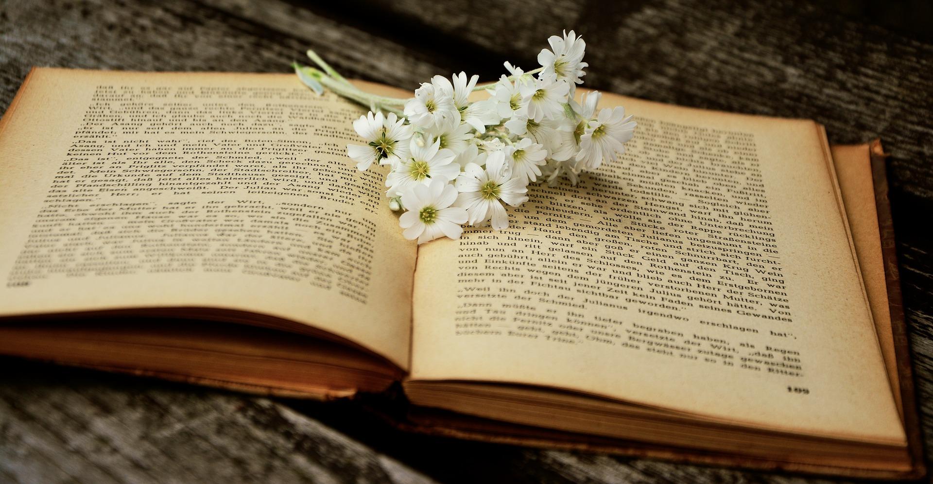 La sélection littéraire de juin : cinq ouvrages tout terrain à lire avant l'été